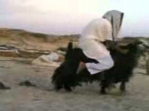 Islamski motorower