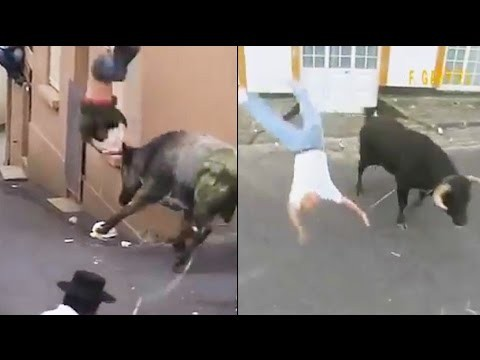 Zawsze-kibicuje-bykowi